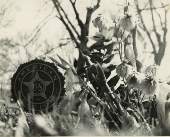 american legion cemetery blog